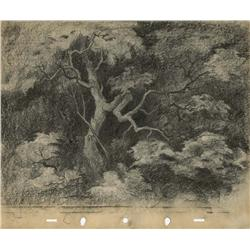 Snow White layout drawing of tree in woods