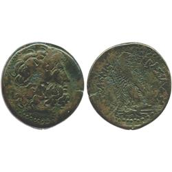PTOLEMAIC KINGS of EGYPT, bronze AE 38 mm, probably Ptolemy III, Euergetes, 246-221 BC.