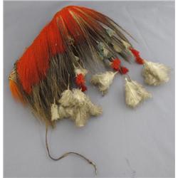 Hair Roach