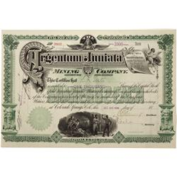 CO - Aspen,Pitkin County - 1899 - Argentum-Juniata Mining Company Stock Certificate - Fenske Collect