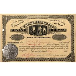CO - Breckenridge,Summit County - 1881 - Spruce Greek Mining Company Stock Certificate - Fenske Coll
