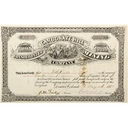 CO - Leadville,Lake County - 1881 - The Carbonate Hill Consolidated Mining Company Stock