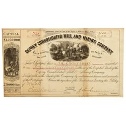 CO - San Juan County,1881 - Osprey Consolidated Mill and Mining Company Stock Certificate