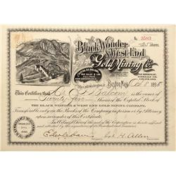 CO - Sherman,Hinsdale County - 1895 - Black Wonder & West End Gold Mining Co. Stock Certificate - Fe