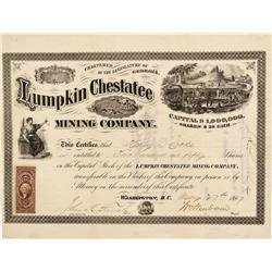 GA - Lumpkin County,May 27, 1867 - Lumpkin Chestatee Mining Company, Stock