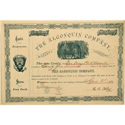 MT - Deer Creek Deer Creek,Deer Lodge County - 1880; 1881 - The Algonquin Company Stock Certificates