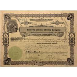 NV - Bullfrog,Nye County - 1906 - Bullfrog Trinidad Mining Company Stock - Fenske Collection