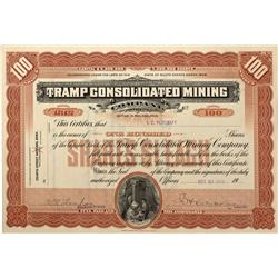 NV - Bullfrog,Nye County - 1909 - Tramp Consolidated Mining Stock Certificate - Fenske Collection