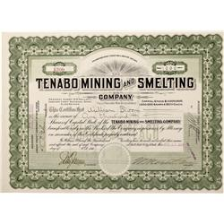 NV - Tenabo,Lander County - 1910 - Tenabo Mining and Smelting Company Stocks