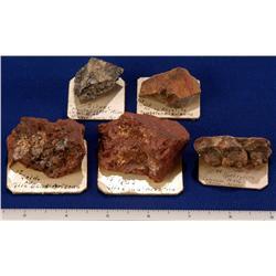 AZ - Gold, Platinum &  Silver Specimens - Arizona