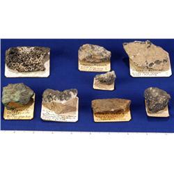 AZ - Silver Species - Arizona