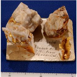 CA - Auburn,Placer County - Gold Specimen - Auburn, California