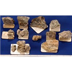 CA - Bodie,Mono County - Gold, Copper & Silver Specimens - Bodie, California