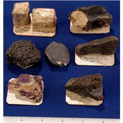 CA - Manganese Species - California