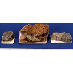 CA - Inyo County - Miscellaneous Mineral Specimens - California