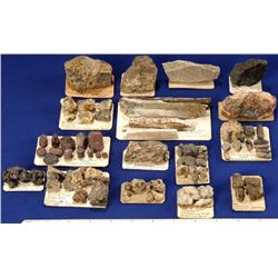 MT - Gallatin & Madison Counties - Miscellaneous Odd Mineral Specimens - Montana