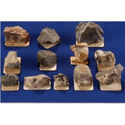 NV - Virginia City,Storey County - Gold & Silver Specimens - Virginia City, Nevada