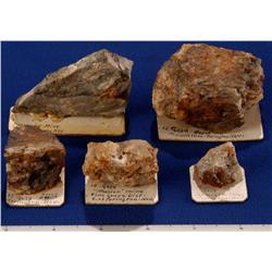 NV - Yerington,Lyon County - Gold Bearing Specimens - Yerington Area, Nevada