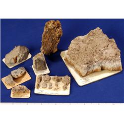 NV - Esmeralda County - Gold Specimens - Nevada