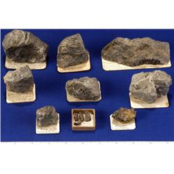 NV - Virginia City,Storey County - Gold Specimens - Virginia City, Nevada