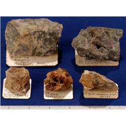 NV - White Pine County - Au-Ag Specimens - Nevada