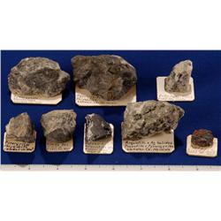 NV - Lander County - Silver Specimens - Nevada