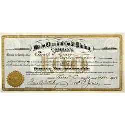 ID - 1900 - Idaho Chemical Gold Mining Company Stock - Fenske Collection