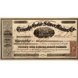 Mexico,1865 - Triunfo Gold and Silver Mining Company Stock Certificate - Fenske Collection