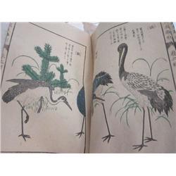 2 Chinese books