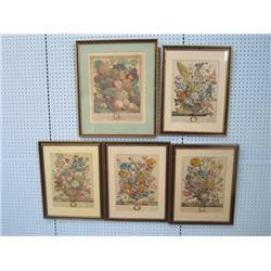"Group lot of 5 ""Botanical"" prints"